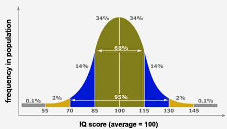IQ test laten doen bij een kind Lisette Schrijft