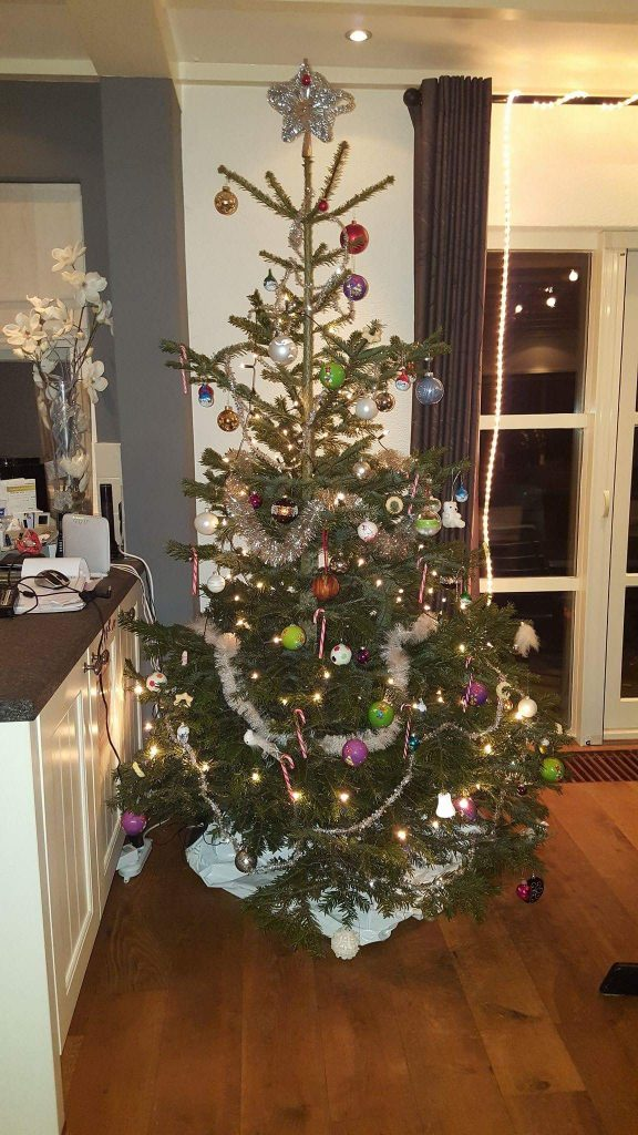 kerstboom sylvie lieve syl perfect 2016