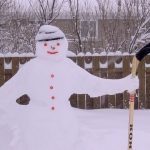 7 tips om in de winter je tuin te onderhouden