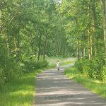 En dat in Nederland… Kan je dochter nog alleen over straat?
