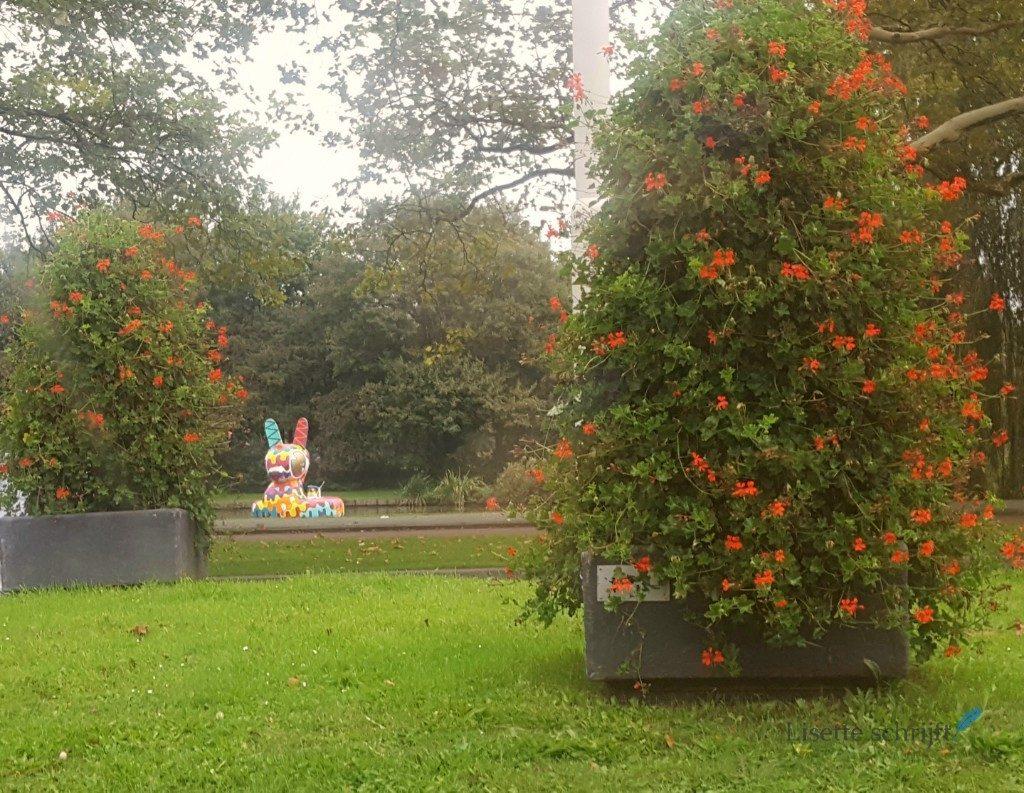 kunst in Rotterdam eend in het water Blijdorp Lisette Schrijft