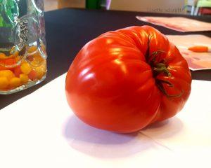 tomatoworld Lisette Schrijft