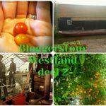 bloggerstour westland deel 2 westlands museum en tomatoworld Lisette Schrijft