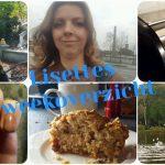 Lisettes weekoverzicht: bakken, bloggen, bijscholing en efteling