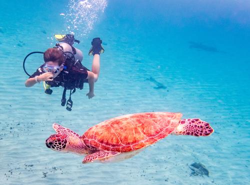 Playa Lagun Curacao Lisette Schrijft