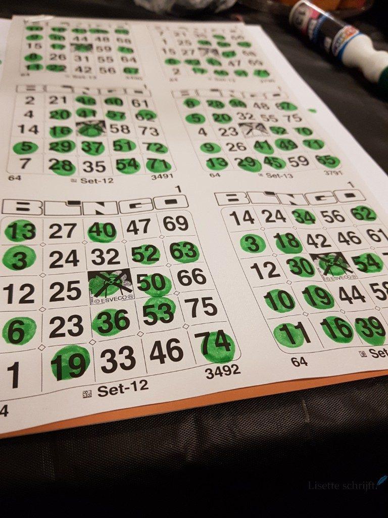 bingo Lisette Schrijft