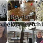 Lisettes Weekoverzicht: over auto's, kikkerdril en Drievliet.