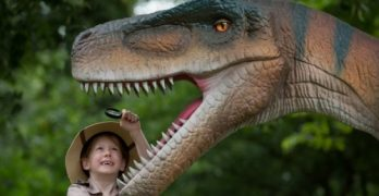 Fan van dino's? Jurassic Kingdom komt naar Schiedam!