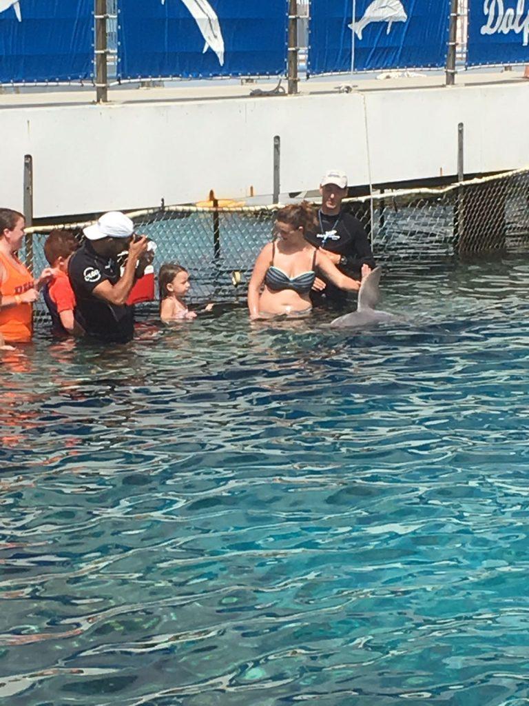 met dolfijn zwemmen op curacao Lisette Schrijft