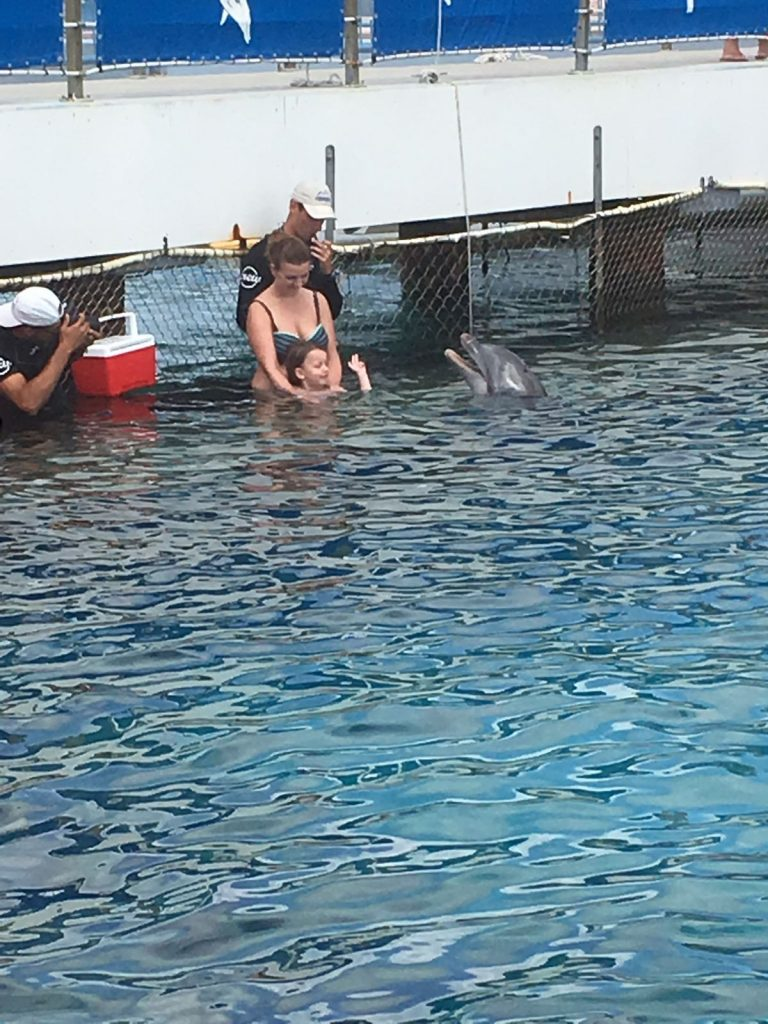 zwemmen met dolfijnen Lisette Schrijft