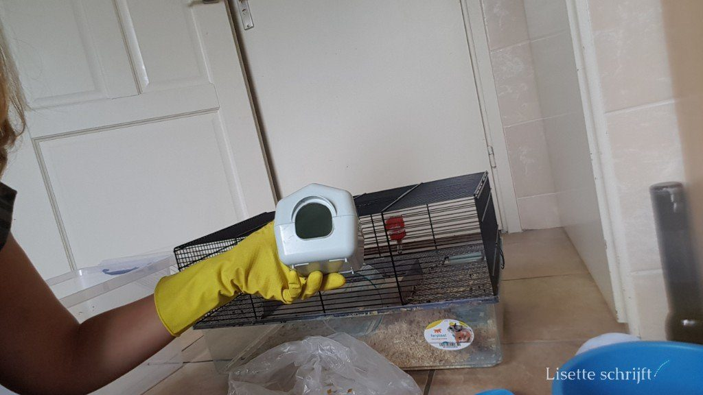 het huisje van de muis