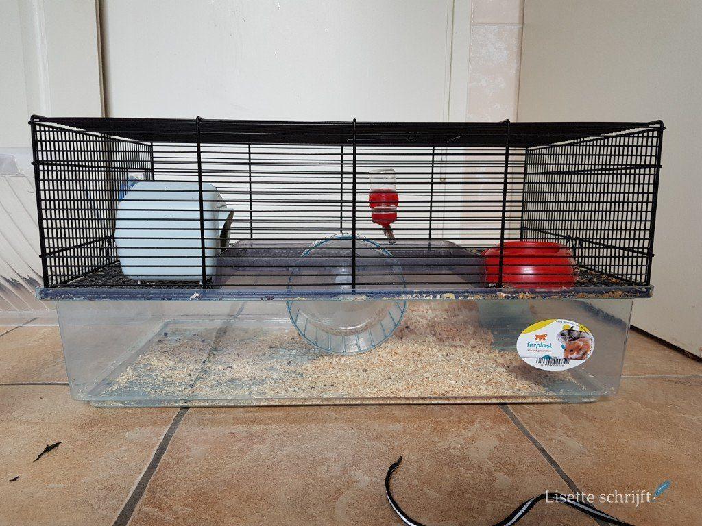 het muizenhok van onze Jerry