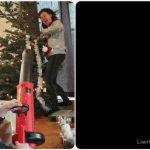 kerstboom sylvie 2019